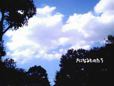 sora_2.jpg